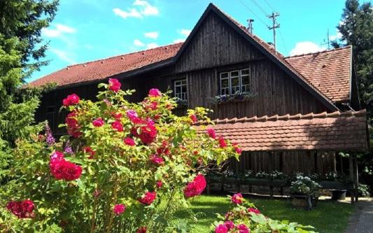Gastgeber bei Lohospo: Ferienwohnung Älbler-Nest