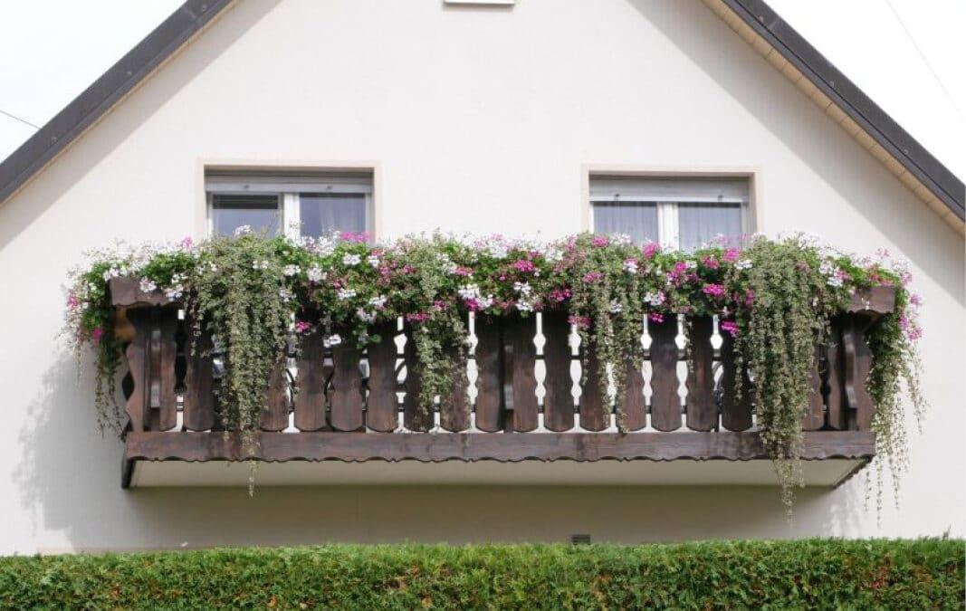 Lohospo Fotoservice in Freiburg