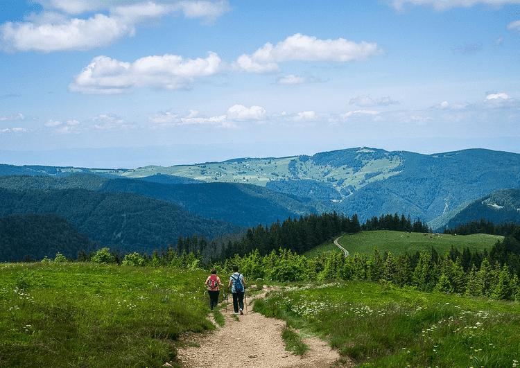 Schwarzwald und Lohospo – Wir halten zusammen