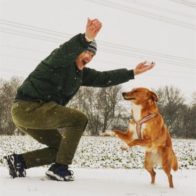 HundeUrlaubsWelt